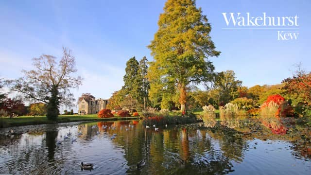 Wakehurst Botanic Garden Appoints SecuriGroup